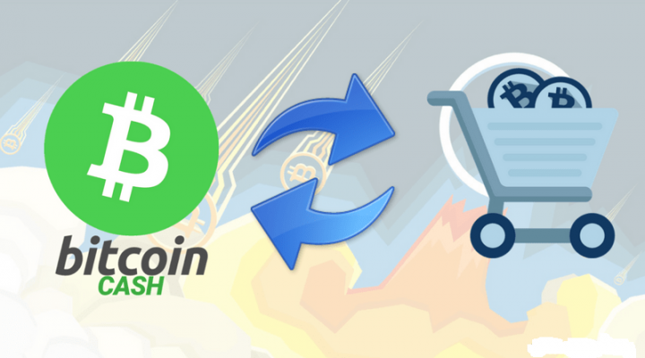 How to buy Bitcoin Cash In India